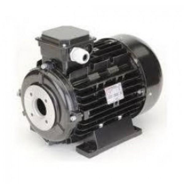 MOTOR 3P - 18.5kW/60Hz